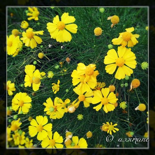 Fotor_144858980081681.jpg